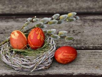 Diseña tu Rama de Olivo y los Huevos de Pascua