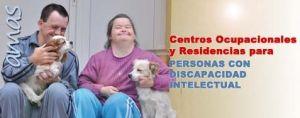 BannerR_CO y R discapacidad intelectual