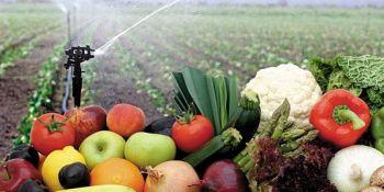 sector, agrario, disponer, insumos, suministro, alimentos,