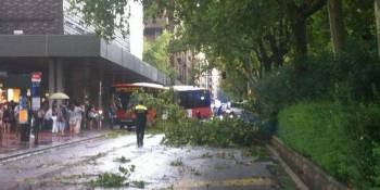 calles, cortadas, fuerte, tormenta, Zaragoza, árboles, caídos,