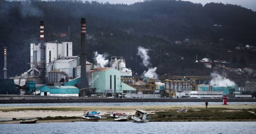 UITA, desconvocado, suministro, madera, fábricas, Navia, Pontevedra, Ence, Plataforma,