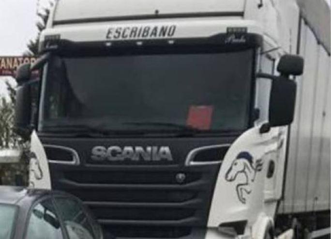 camión, robado, Scania, matrícula,