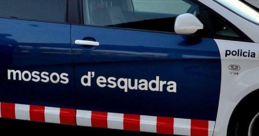 Detenido un camionero por conducir drogado y de forma temeraria por la AP-7