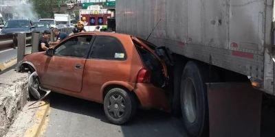 rescate, perro, autopista, México, accidente,