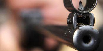 detenido, disparar, camión, rifle, aire, comprimido,