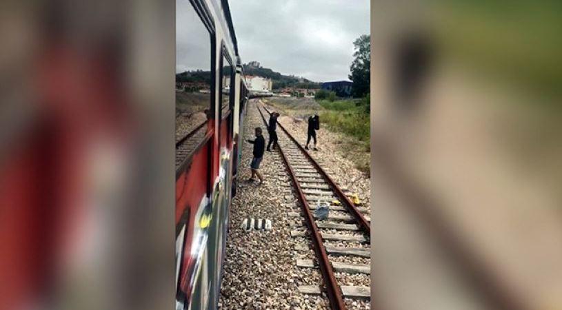 detenido, grupo, grafiteros, supuestos, daños, trenes,