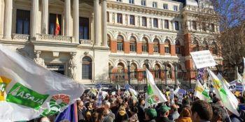agricultores, manifestación, Madrid, Ministerio, Gobierno,