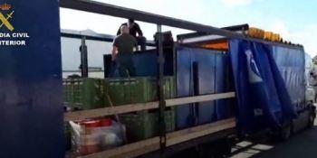 24, detenidos, tráfico, droga, transportaba, camiones, fotos