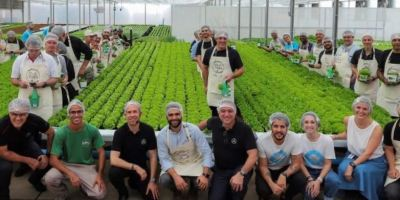 Daimler TRucks & Bus Brasil, abre, granja urbana, cultivar, hortalizas,