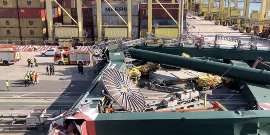 El coste millonario por la caída de la grúa en el Puerto de Valencia