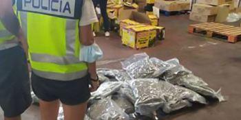 Distribuía marihuana en camiones oculta entre especias asiáticas