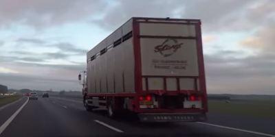 Las nuevas normas de conducción en España para 2021. Vídeo