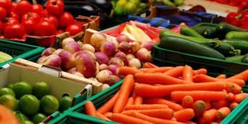 Coexphal y Proexport solicitan fondos europeos para avanzar en la economía del sector hortofrutícola