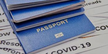 Fenadismer pide que se exceptúe al transporte del pasaporte sanitario