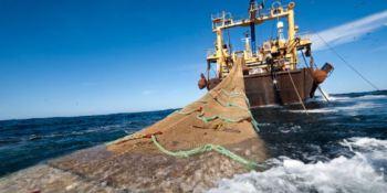Los 27 negociarán el lunes las cuotas pesqueras para 2021, sin acuerdo con Londres