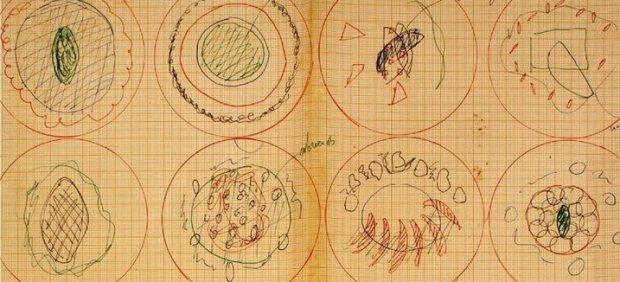 Los dibujos de platos Ferran Adrià expuestos en el Drawing Center de Nueva York