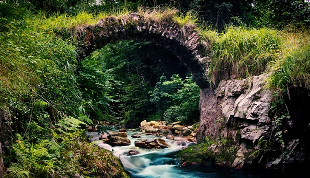 nature-the-bridge-forest-stream-river-stream