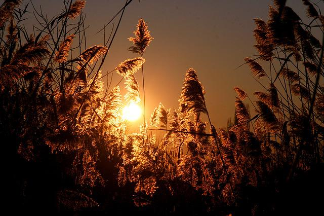 sunset-_640x426