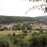 La transición ecológica como oportunidad para el medio rural