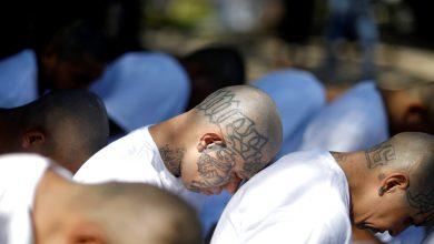 Photo of Familiares de víctimas aliviados de ofensiva de EE.UU. contra pandilla MS-13