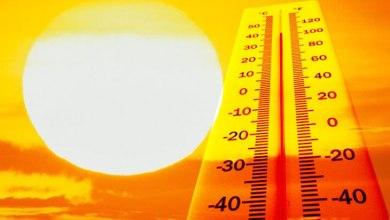 Photo of Temperaturas de 37º colocam 11 concelhos em risco máximo