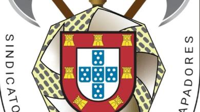 Photo of Sindicato Nacional dos Bombeiros Sapadores repudia acusações da autarquia de Setúbal