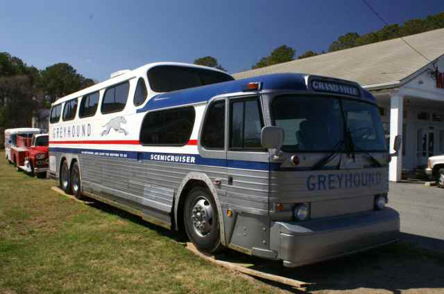 bus greyhound