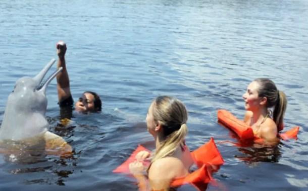 Numero de estrangeiros que visitam Manaus é cada vez maior