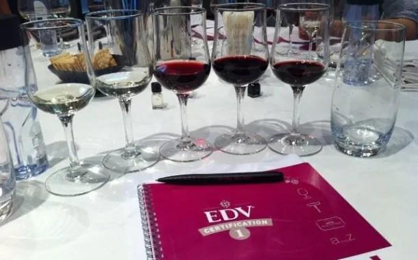 TAP indica escola de vinho para quem visita a França
