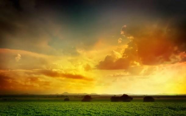 10 exemplos de que você não deve desistir de seus sonhos