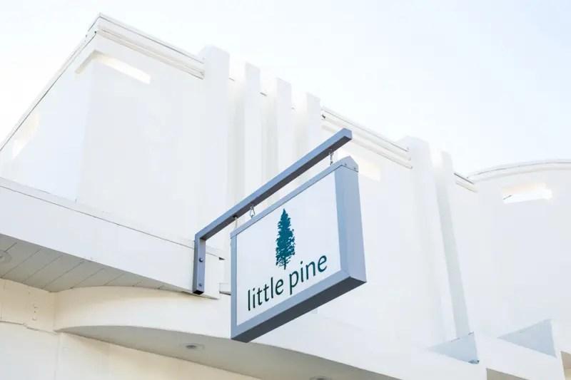 Little_Pine_11_15