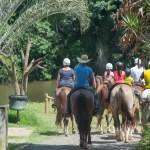 Fazenda Capoava monta programação especial para o carnaval