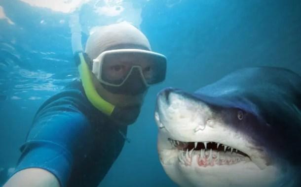Os perigos de uma selfie