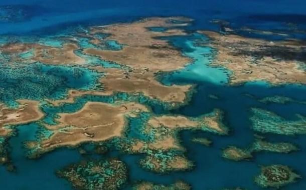 Reaberto, Parque Nacional de Abrolhos está livre de manchas de óleo