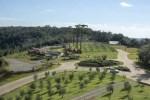 Parque Olivas de Gramado se prepara para a primeira colheita de azeite da Serra Gaúcha