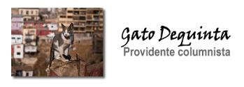 Opinion_GatodeQuinta