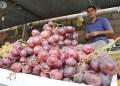 Son Bs. 250 y Bs.600 por un kilo de uvas