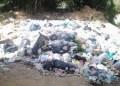 El mal olor por la acumulación de basura y animales muertos tiene al borde de la locura a los habitantes de la invasión