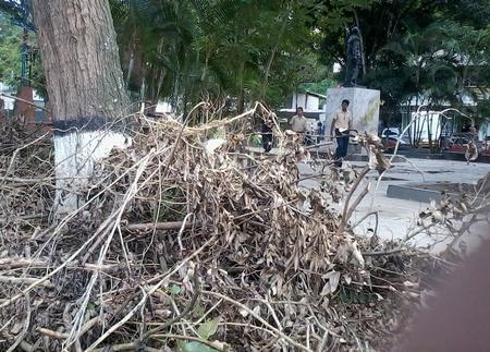 Aseguran que en varias zonas del pueblo hicieron desmalezamiento pero no se llevaron los restos de matorrales