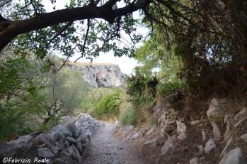 sentiero per Ieranto 1