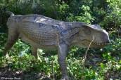 astroni dinosauri in carne ed ossa1