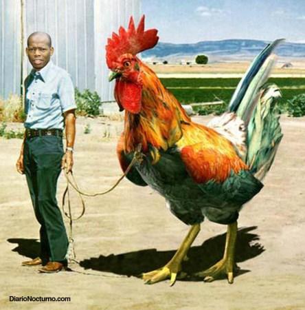 polla-del-tino-asprilla