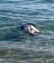 joven ahogado