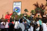 JARDIN MUSEO DEL BONSAI EN ALMUÑECAR VISITAS ESCOLARES 16 (3)
