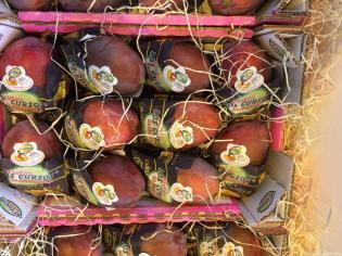 la-fruta-subtropical-de-los-cursos-en-fruit-attraction-la-mejor-cara-16-10