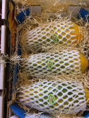 la-fruta-subtropical-de-los-cursos-en-fruit-attraction-la-mejor-cara-16-13