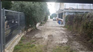 calle-necropolis-abierta-para-acceso-al-ies-antigua-sexi-16-2