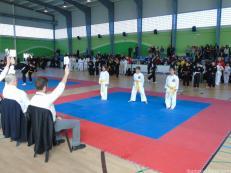 jueces-valoran-ejercicios-kenpo-en-pabello-la-herradura-16