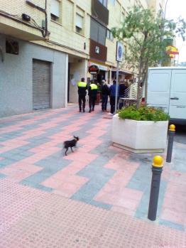 AGENTES Y BOMBEROS SE PERSONARON EN EL LUGAR DEL INCENDIO 17 (2)