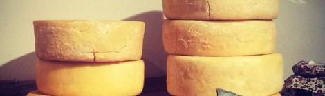 A Queijaria e a diversidade de queijos brasileiros